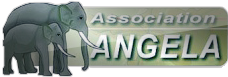 Logo Association Angela